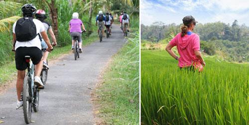 bali cycling tour murah